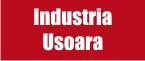 Industria usoara