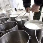 cantitatea-de-lapte-colectata-a-crescut-cu-15-5-in-primele-noua-luni-ale-anului-comparativ-cu-2013-14469
