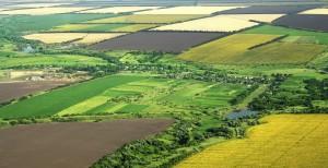 teren agricol stire