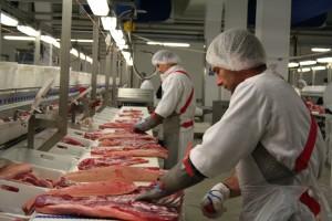 carne1 porc export