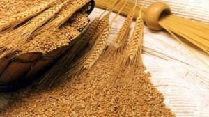 Romania-ar-putea-lua-locul-Ucrainei-in-topul-comertului-cu-cereale---Mircea-Cosea