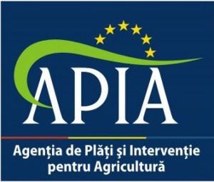 Apia_bistrita