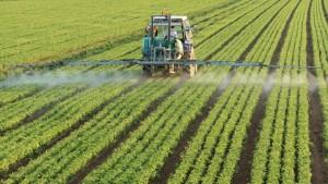 îngrășământ-azot-fertilizare-1