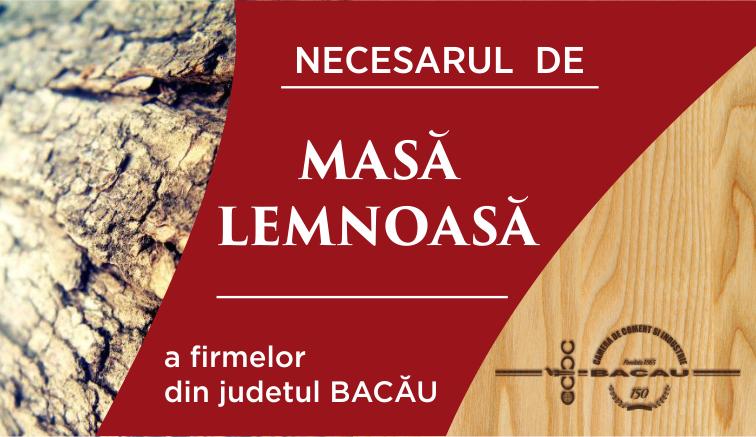 slider necesar lemn [1]
