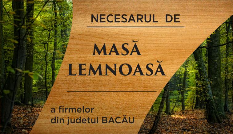 slider necesar lemn [3]