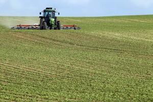 agricultura-romania