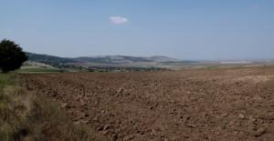 terenuri-agricole-640x330