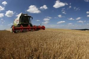 le-monde-mii-de-fermieri-francezi-italieni-spanioli-englezi-germani-si-danezi-se-muta-in-romania-el-dorado-ul-agriculturii-europene-11376341