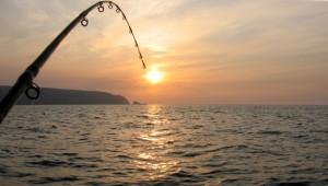 pescuit_pescar_peste_78544400