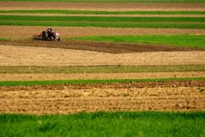 fonduri-europene-pentru-ferme