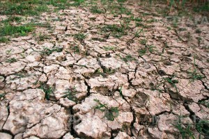 Pamant crapat de seceta intr-un canal de irigatii din Baragan, judetul Ialomita, sambata, 6 octombrie 2012. GABRIEL PETRESCU / MEDIAFAX FOTO