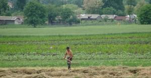 vanzarea-terenurilor-agricole-640x330