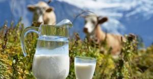 igiena-laptelui-ansvsa-640x330