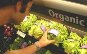 doua-treimi-dintre-produsele-ecologice-sunt-ecologice-doar-pe-eticheta-871