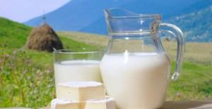 lapte-640x330