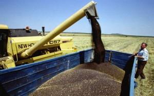 subventii-agricole