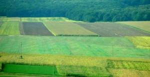 comasarea-terenurilor-agricole-640x330