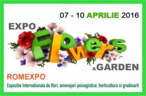 expo-flowers1