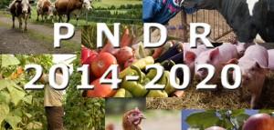 Colaj_PNDR_2014-2020_web-567x270