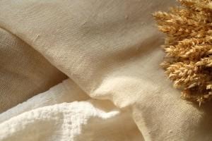 canepa-centenarului-netopita-101